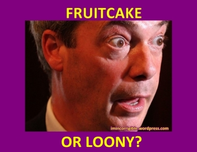 Nigel-Farage fruitcake or loonY