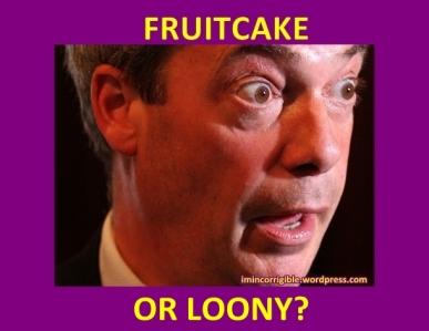 Nigel-Farage fruitcake or loonY